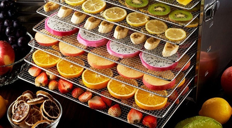 How To Choose The Best Dehydrator For Your Home
